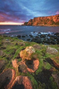 Irland Giant's Causeway im Abendlicht von Jean Claude Castor