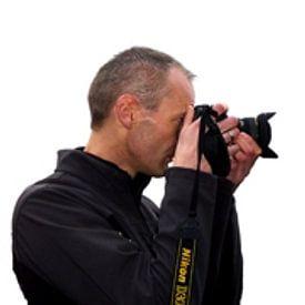Tammo Strijker avatar