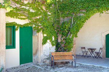 sfeervol bankje in het groen van Carmela Cellamare
