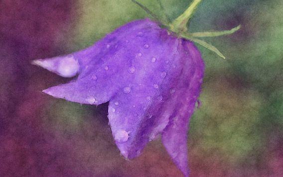Blue bell flower van Rosi Lorz