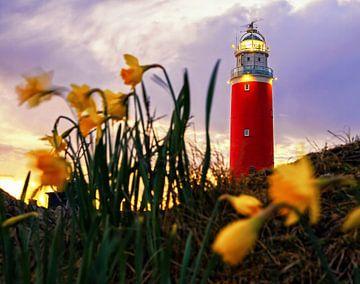 Vuurtoren van Texel met Narcissen / Texel Lighthouse with Daffodils van Justin Sinner Pictures ( Fotograaf op Texel)