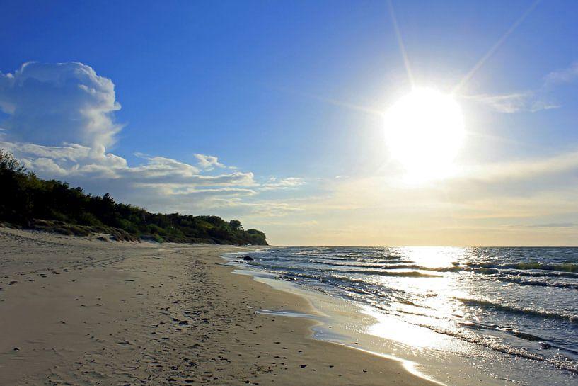 Im Gegenlicht sur Ostsee Bilder