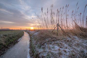 Sloot in de winter van Moetwil en van Dijk - Fotografie