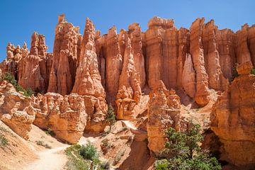 UTAH Bryce Canyon Hoodoos von Melanie Viola