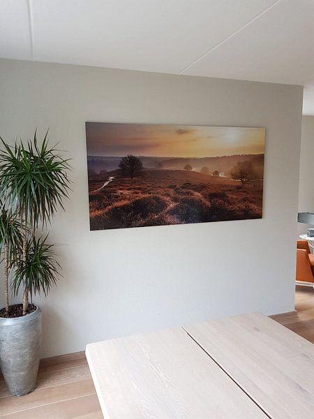Kundenfoto: Posbank zonsopkomst von Dennis van de Water, auf alu-dibond