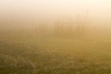 Houtduif of hek in de mist van Menno van Duijn