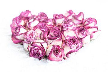 Herz aus Rosen von Christianne Keijzer