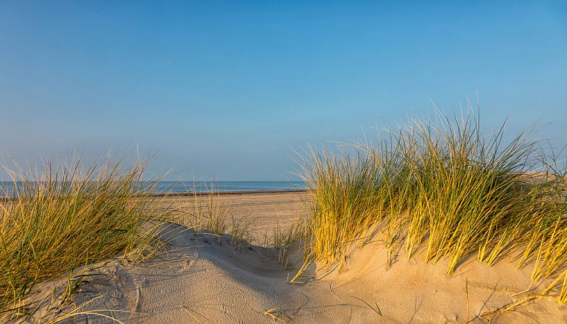 De zee achter de duinen van Bram van Broekhoven