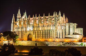 Verlichte kathedraal van Palma de Mallorca, Spanje Balearen van Alex Winter