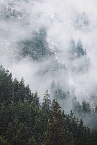 Mood of Austria  van Bryan Venken