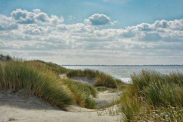 An der holländischen Nordseeküste von Joachim G. Pinkawa