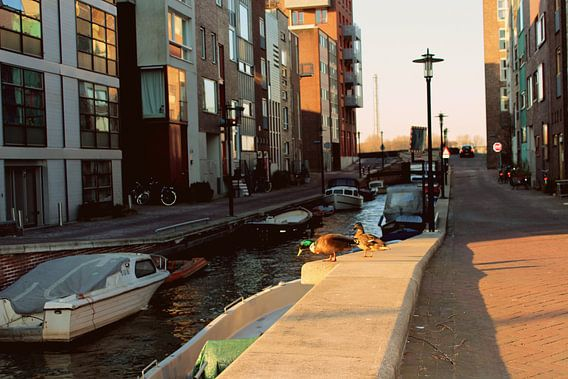 Amsterdam, Gracht.