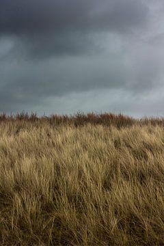 Donkere wolken boven de duinen von Arno Photo