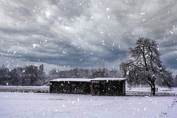 Besneeuwd landschap van Michael Nägele