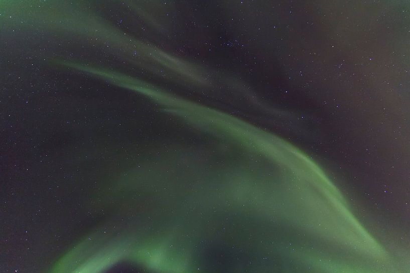 Northern Lights, Skulsfjord 3 von Freek van den Driesschen