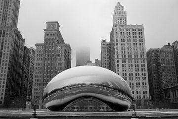 'The Bean', Chicago van