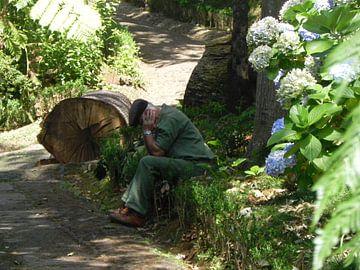 Lunchpauze voor tuinman in Botanischetuin op Madeira van Ingrid Van Maurik