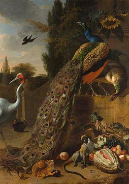 Peacocks, Melchior d'Hondecoeter sur Meesterlijcke Meesters