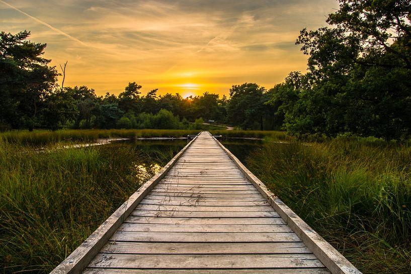 Sunset Walkway van William Mevissen