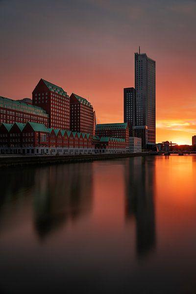 Kop van Zuid in Rotterdam van Steven Dijkshoorn
