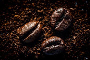 Macro koffiebonen op koffiepoeder van Dieter Walther