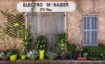 Französische Fassade mit Pflanzen von Anouschka Hendriks