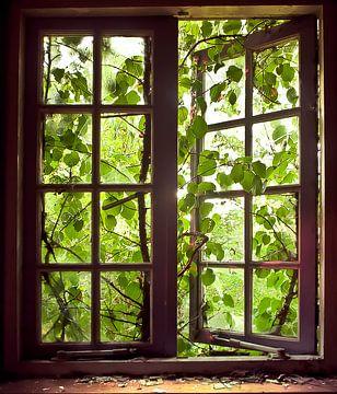 Uit het raam van Sonja Pixels
