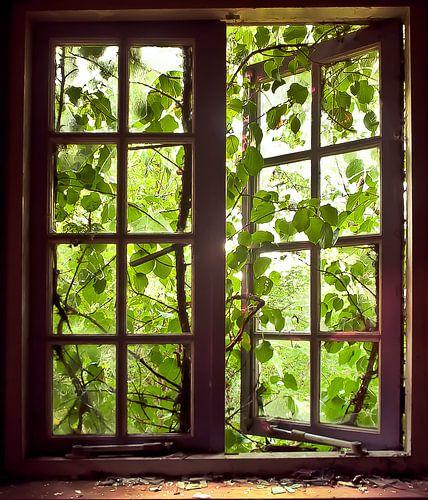 Uit het raam
