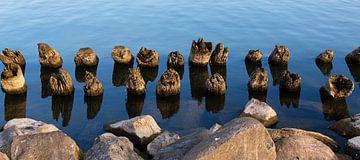 Alte Gerüstmasten von Johan Zwarthoed