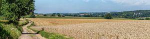 Zuid-Limburg je zal er maar wonen van John Kreukniet