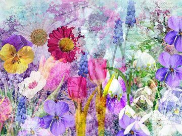 Frühlingserwachen von christine b-b müller