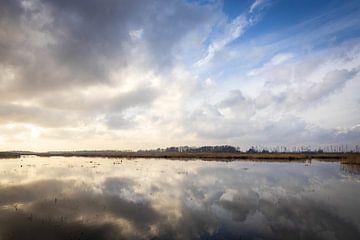 Nuages au-dessus du Biesbosch
