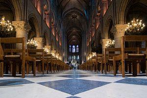De sprookjesachtige sfeer van de Notre Dame in Parijs