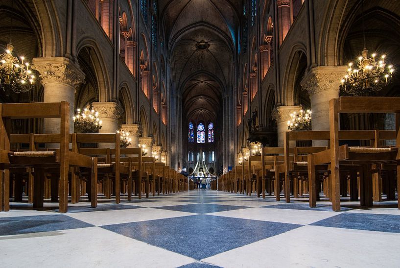 De sprookjesachtige sfeer van de Notre Dame in Parijs van Michel Geluk