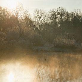 Misty morning van CreaBrig Fotografie