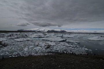 Jokulsarlon, IJsland van Ingrid Mooij