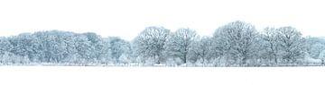winters landschap Groningen von Margriet Hulsker