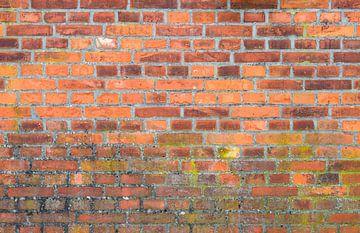 Oude bakstenen muur achtergrond textuur van Alex Winter