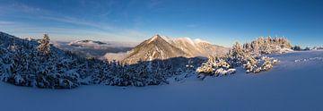 Bergpanorama in winterkleed van Sandra Schönherr