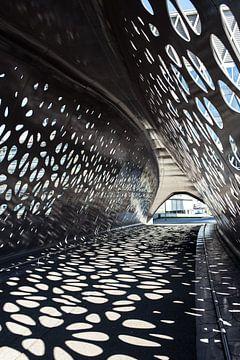 Architectuur  Antwerpen van Tine Schoemaker