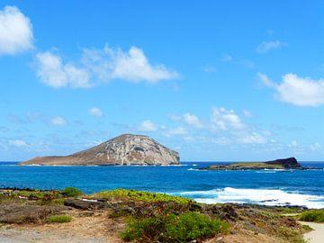Rabbit Island Hawaii van Janina Ballali