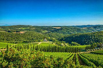 De Toscaanse groene heuvels in de zomer van Jan de Wild