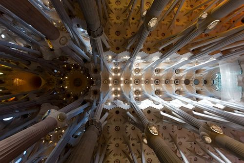 Sagrada Familia van Guido Akster