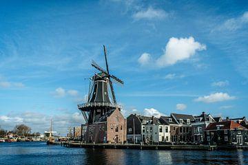 Die Adriaan in Haarlem mahlen von nol ploegmakers
