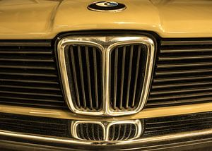 BMW oldtimer van Susan van der Riet