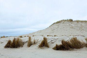 Duinen, (Hargen aan Zee) Camperduin Noord - Holland van Jeroen van Esseveldt