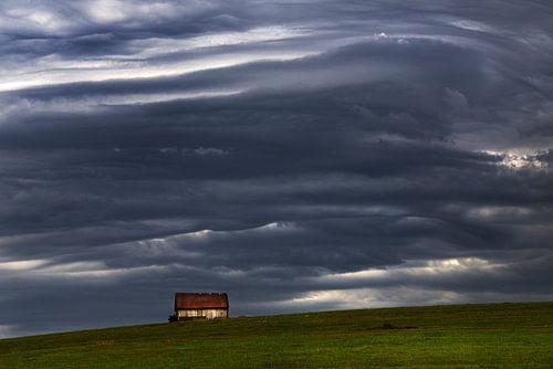 Voor de storm von Harrie Muis