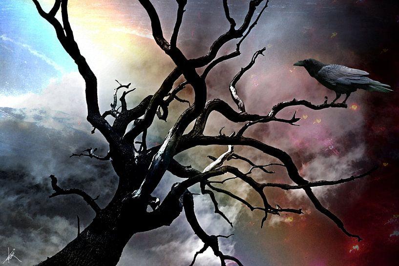 Die Krähe von Harald Fischer