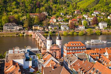 Oude stad, oude brug met brugdeur, excursieschip op de Neckar-rivier van Werner Dieterich