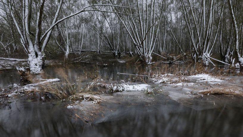 Winter griend van Marcel van Balkom